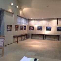 5月のギャラリー展示