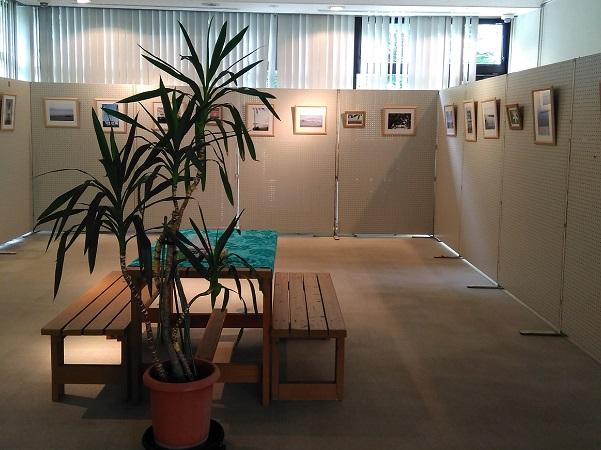 1月、2月のギャラリー展示