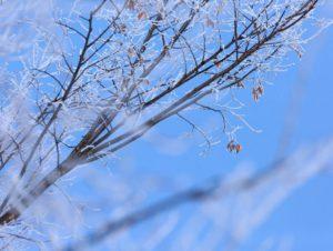 冬の万葉講座